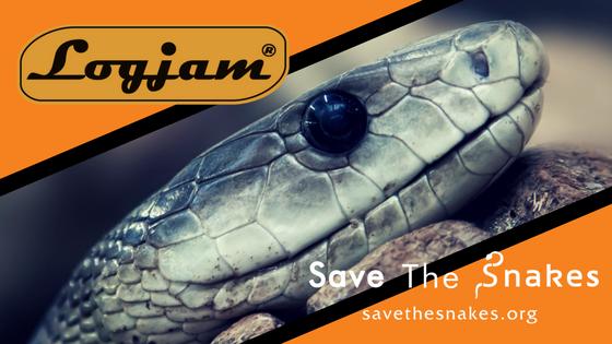 logjam, snake, black mamba