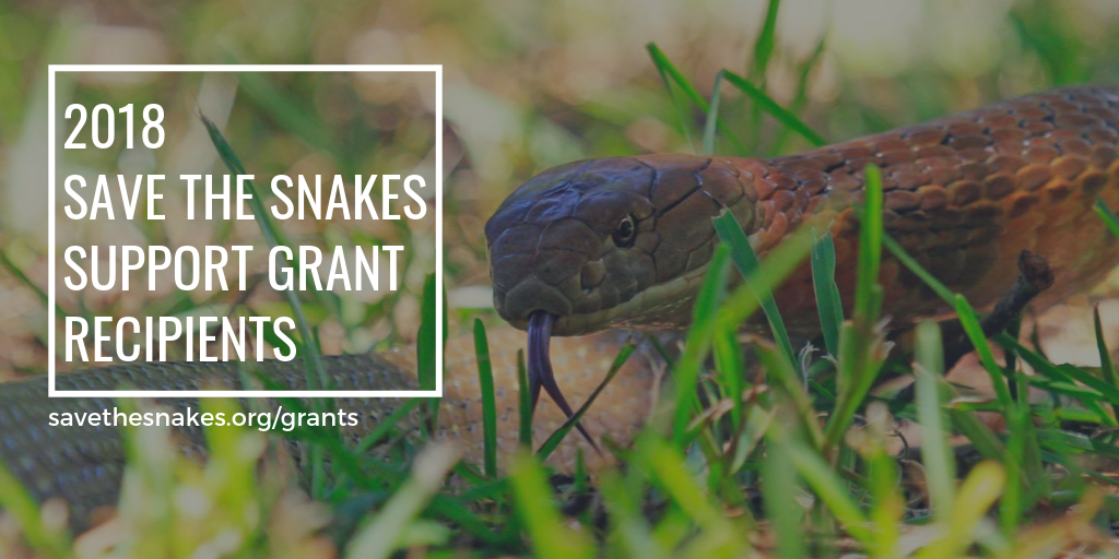 The 2018 Save The Snakes Support Grant Recipients